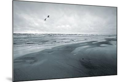 Stylized Monochrome Photo: Two Seagulls and Empty Coast of the Sea. Gulf of Finland, Baltic Sea, Na-Eugene Sergeev-Mounted Photographic Print