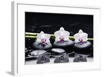 Spa Still Life with Three Orchid and Zen Stones with Bamboo Grove Reflection-crystalfoto-Framed Photographic Print