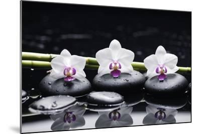 Spa Still Life with Three Orchid and Zen Stones with Bamboo Grove Reflection-crystalfoto-Mounted Photographic Print