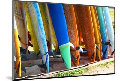 Surf Boards Standing on Kuta Bali Beach-bioraven-Mounted Photographic Print