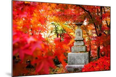 Autumn Japanese Garden with Maple-NicholasHan-Mounted Photographic Print