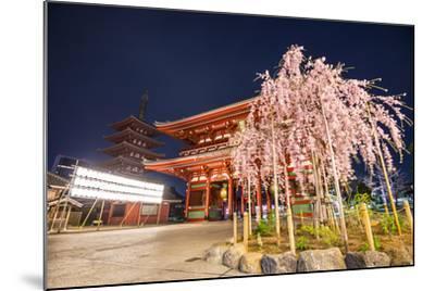 Tokyo, Japan at Senso-Ji Temple in the Asakusa District.-SeanPavonePhoto-Mounted Photographic Print