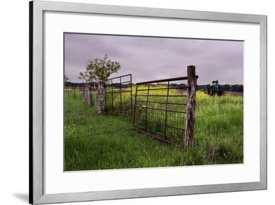 Texas Spring Field-Maarigard-Framed Photographic Print