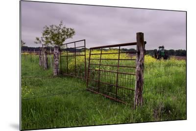Texas Spring Field-Maarigard-Mounted Photographic Print