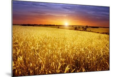 Colorful Sunset over Wheat Field.-Elenamiv-Mounted Photographic Print