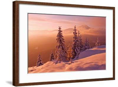 Snovy Trees on Winter Mountains-mr. Smith-Framed Photographic Print