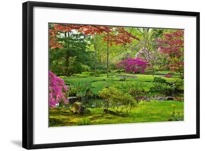 Japanese Garden-neirfy-Framed Photographic Print