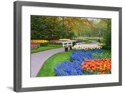 Many Spring Flowers in Many Colors-Colette2-Framed Photographic Print