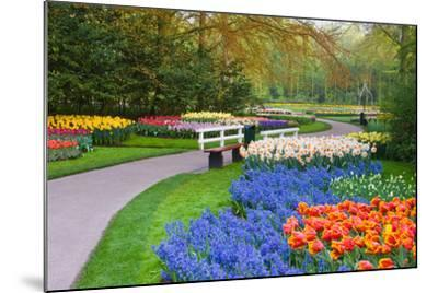 Many Spring Flowers in Many Colors-Colette2-Mounted Photographic Print