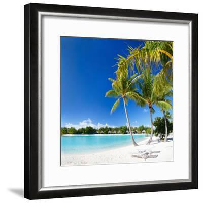 Beautiful Beach with Coconut Palms on Bora Bora Island in French Polynesia-BlueOrange Studio-Framed Photographic Print