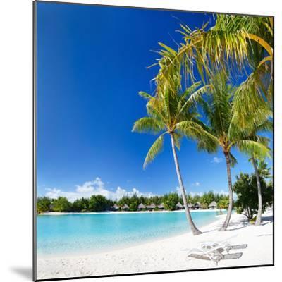 Beautiful Beach with Coconut Palms on Bora Bora Island in French Polynesia-BlueOrange Studio-Mounted Photographic Print