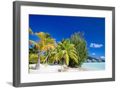 Beautiful Beach on Bora Bora Island in French Polynesia-BlueOrange Studio-Framed Photographic Print