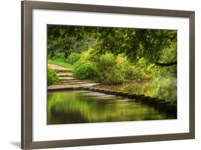 Beautiful Forest Scene of Enchanted Stream Flowing through Lush Green Foliage-Veneratio-Framed Photographic Print