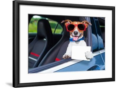 Dog Drivers License-Javier Brosch-Framed Photographic Print