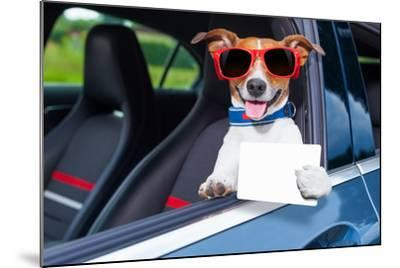 Dog Drivers License-Javier Brosch-Mounted Photographic Print
