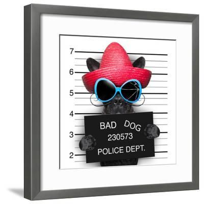 Wanted Dog-Javier Brosch-Framed Photographic Print