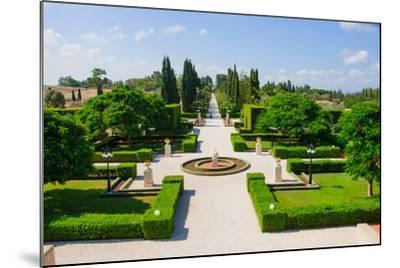 Bahai Gardens, Acre-RnDmS-Mounted Photographic Print