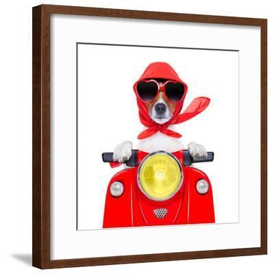 Motorcycle Dog Summer Dog-Javier Brosch-Framed Photographic Print