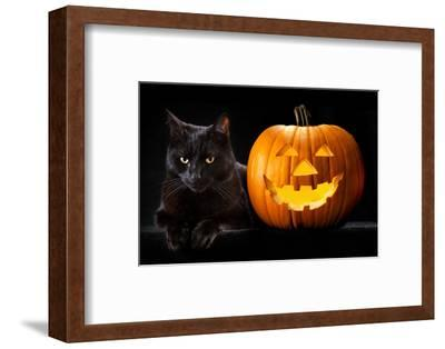 Halloween Pumpkin and Black Cat Scary Spooky and Creepy Horror Holiday Superstition Evil Animal And-kikkerdirk-Framed Photographic Print