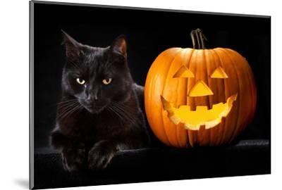 Halloween Pumpkin and Black Cat Scary Spooky and Creepy Horror Holiday Superstition Evil Animal And-kikkerdirk-Mounted Photographic Print
