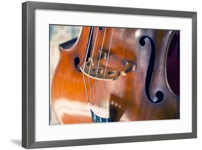 Double Bass-lachris77-Framed Photographic Print