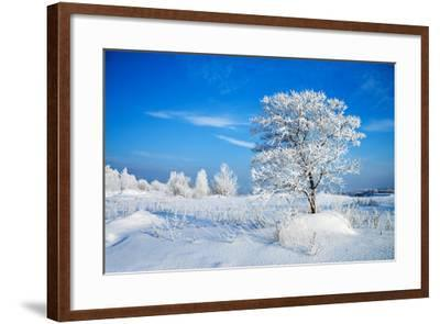 Winter Landscape-Yanika-Framed Photographic Print