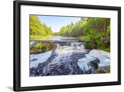 Forest Waterfall-Vadim Petrov-Framed Photographic Print