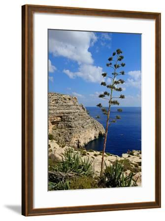 Blue Grotto Coast Malta-Diana Mower-Framed Photographic Print