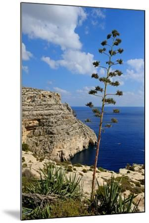 Blue Grotto Coast Malta-Diana Mower-Mounted Photographic Print