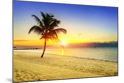 Sunset on the Beach-vent du sud-Mounted Photographic Print