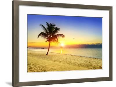 Sunset on the Beach-vent du sud-Framed Photographic Print