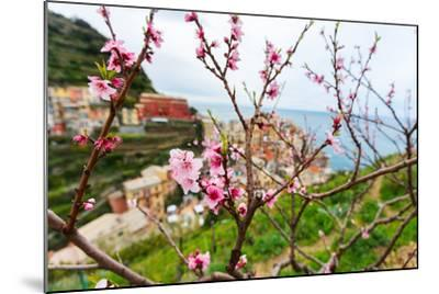 Spring Blooming Cherry Tree with Background Scenic View of Colorful Houses of Manarola Village, Cin-BlueOrange Studio-Mounted Photographic Print