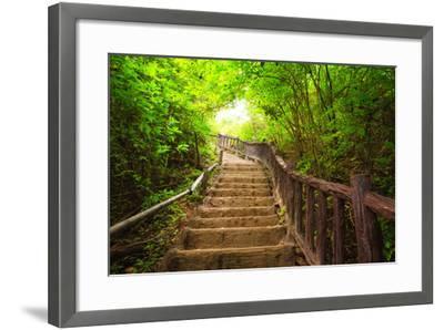 Stairway to Forest, Erawan National Park,Kanchanburi,Thailand-lkunl-Framed Photographic Print