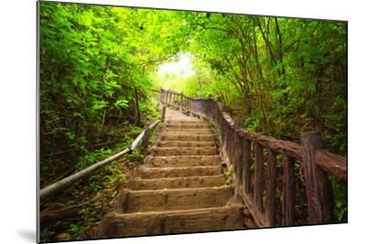 Stairway to Forest, Erawan National Park,Kanchanburi,Thailand-lkunl-Mounted Photographic Print