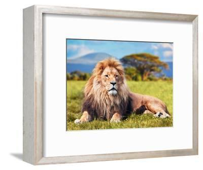 Big Lion Lying on Savannah Grass. Landscape with Characteristic Trees on the Plain and Hills in The-Michal Bednarek-Framed Photographic Print