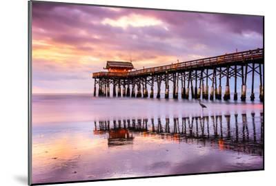 Cocoa Beach, Florida, USA at the Pier.-SeanPavonePhoto-Mounted Photographic Print