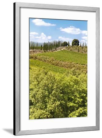 Montalcino-lachris77-Framed Photographic Print