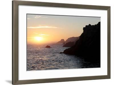 Point Lobos State Reserve Sunset-Dan Schreiber-Framed Photographic Print