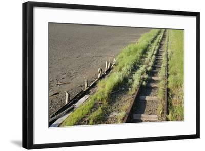 Forgotten Railway - 26-akorotaev-Framed Photographic Print