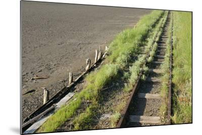 Forgotten Railway - 26-akorotaev-Mounted Photographic Print