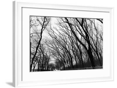 Chicago Winter-CHRSTOCK-Framed Photographic Print