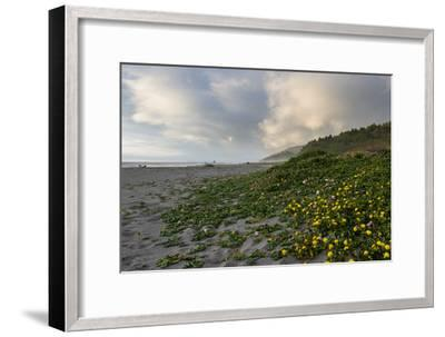 California Coast-wollertz-Framed Photographic Print