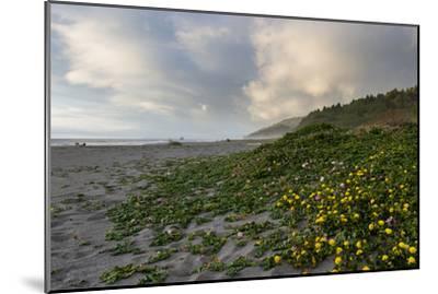 California Coast-wollertz-Mounted Photographic Print