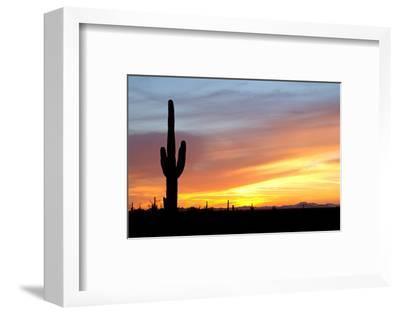 Desert Sunset with Saguaro Cactus-Christina E-Framed Photographic Print
