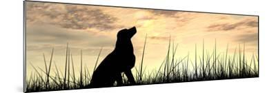 Concept or Conceptual Young Beautiful Black Cute Dog Silhouette in Grass or Meadow over a Sky at Su-bestdesign36-Mounted Photographic Print