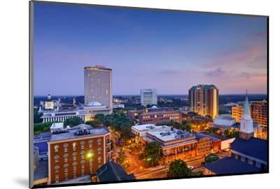 Tallahassee, Florida, USA Downtown Skyline.-SeanPavonePhoto-Mounted Photographic Print