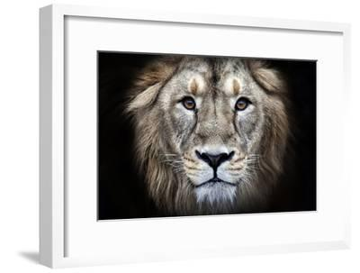 Psychedelic Grunge Style Closeup Portrait of an Asian Lion.-olga_gl-Framed Photographic Print