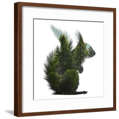 Forest - Squirrel - Silhouette--Framed Photographic Print