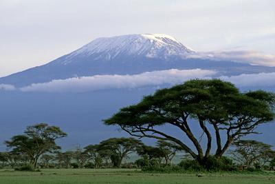 Mt Kilimanjaro in Tanzania--Photographic Print