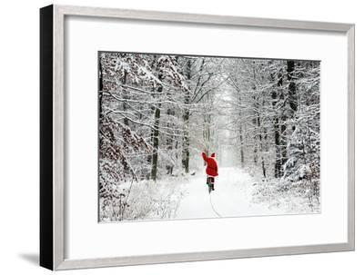 Father Christmas Riding Bicycle Through Beech--Framed Photographic Print